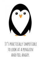 It's Practically Impossible To Look At A Penguin And Feel Angry by ChengMatsumoto