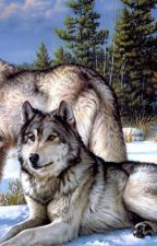 The Wild Ones by Blazing_wolf_howl
