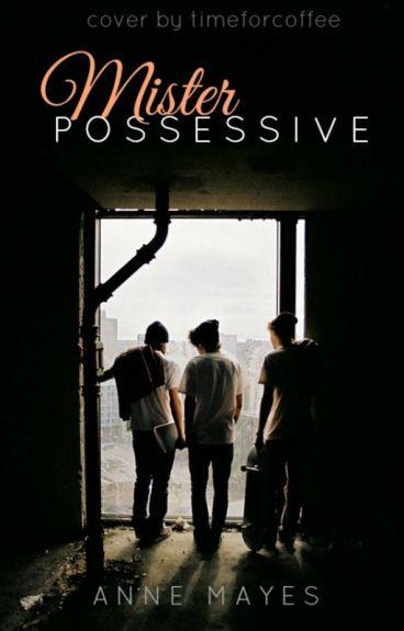Mr Possessive (BoyxBoy)