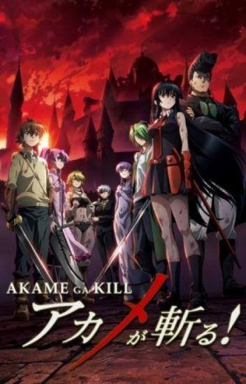 Akame Ga Kill x Stand User! Male! Reader!