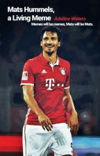 mats hummels, a living meme  by slootherin