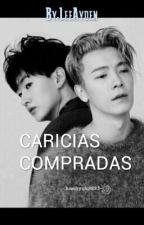 Caricias Compradas (EunHae) by LeeAyden