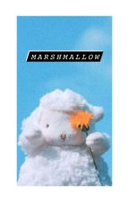 KG || Marshmallow. by felicette__