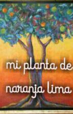 MI PLANTA DE NARANJA LIMA  by Larap90