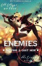 (Completed) ENEMIES▪LADYBUG AND CHAT NOIR▪ by TorneaIonela
