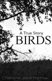 Birds by AutumnThorn
