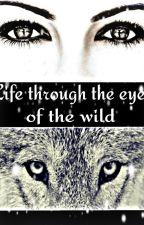 Life through the Eyes of the Wild by bella15794