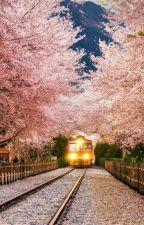 Je veux te voir, Corée by SujibayT