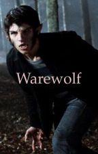 Warewolf by elliotgolderyd05