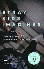 Stray Kids Imagines || Ot9 by changbeanie99