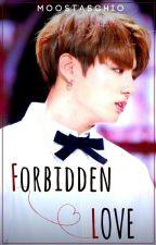 Forbidden Love | JUNGKOOK X READER by moostaschio