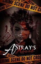「️A Stray's Heart」️-  ғᴇʟɪx ʟᴇᴇ ғᴀɴғɪᴄᴛɪᴏɴ by loading_not_today