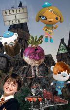 Octoauts Harry Potter Crossover (Harry X Captain Barnicles) by bumnugs
