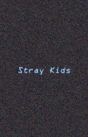 Stray Kids Texts Stray Kids As Your Boyfriend Wattpad