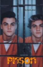 prison {Dolan Twins} COMPLETED by _Logastellus_