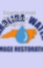 Experts of Mold Remediation Raleigh NC by carolinawater1