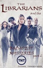 The Librarians ...and the Sleepwalking Caretaker (Budapest Mysteries - part 2) by Flopkes