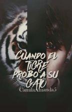 Cuando el tigre probo a su Gato *Kookv*  by Mi_TaeKookie