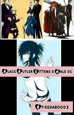 Black Butler Kittens x Male Oc by kedaboo03