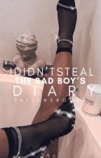 I Didn't Steal The Bad Boys Diary | sequel to ISTBBD (editing)  by fallenxroses
