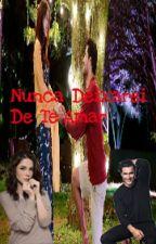 NUNCA DEIXAREI DE TE AMAR by _GUCILIA_