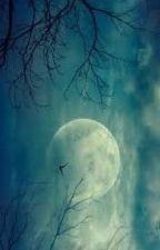Descendentes da Lua. by Zayn2222222
