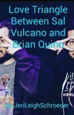 A love triangle between Sal Vulcano and Brian Quinn by JeriLeighSchroeder