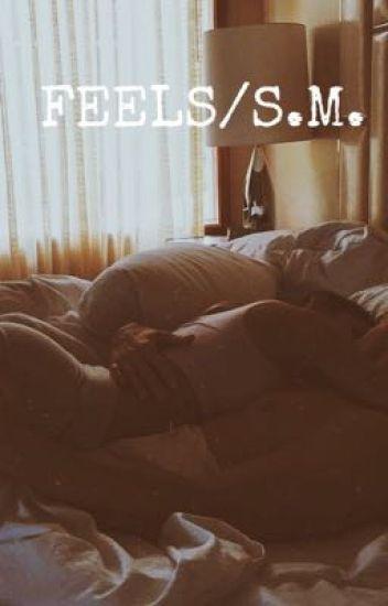 FEELS •shawn mendes•