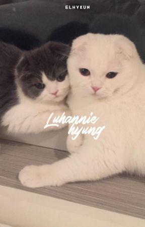 Luhannie hyung ✧ hunhan. by elhykun