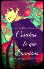 Cosechas lo que Siembras | KHR by XalinTherrata-Corner