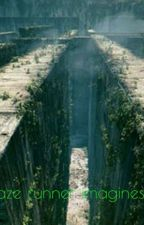 The Maze runner Gif Imagines  by -Acquiesceu