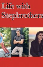 Life With Stepbrothers by musicalfan27