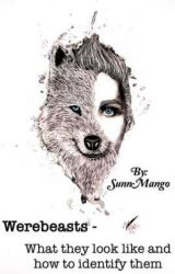 WEREBEASTS - What they look like and how to identify them! by SunnMango