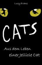 Cats - aus dem Leben einer Jellicle Cat by lu_evans_