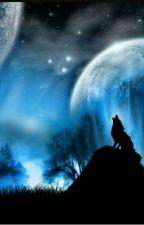 W blasku księżyca  by gabrysia12357