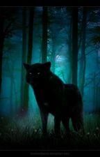 The Wolf Of Death  by NightWildWolff