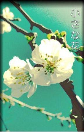 Little Flowers (Unabridged / Hiatus) by JaeJaeHyun
