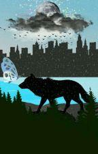 My Werewolf  by hannchococrem