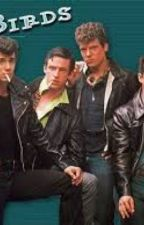The New Girl ( Grease 2; Johnny Nogerelli fanfic) by Itzreneeayyeee