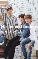 Misunderstandings are a bitch { vmin + jikook } by kookieschimmy