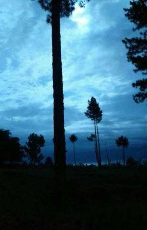 The Adventure of Joko Rillensius in the Sacred Land - Bindu