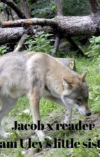 Jacob x reader  'Sam Uley's little sister' (DISCONTINUED) by Raphael_fan