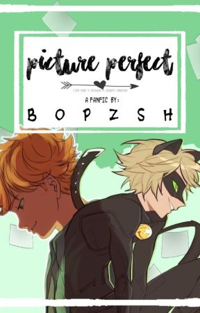 Picture Perfect (Adrien x Reader x Chat Noir) by bopzsh