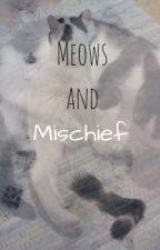 Meows and Mischief by Rowanmoonlight