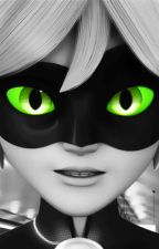 Cat Got Your Tongue?  (Chat Noir x Male Reader) by MeekoMunroe