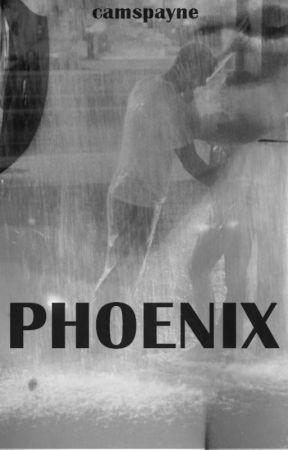 Phoenix by camspayne