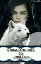 • A Companheira Do Supremo • by Mminguante