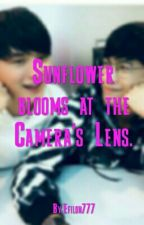 Sunflower blooms at the Camera's Lens. (Kong X Arthit) by Efilon777