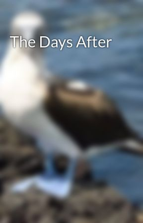 The Days After by SpringStar186