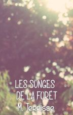 Les songes de la Forêt by manonterrisse